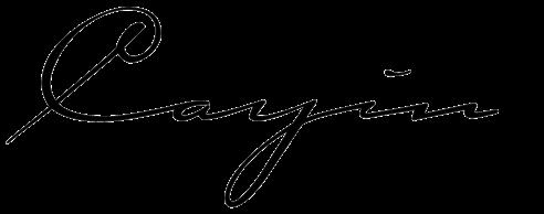 Cayin logo
