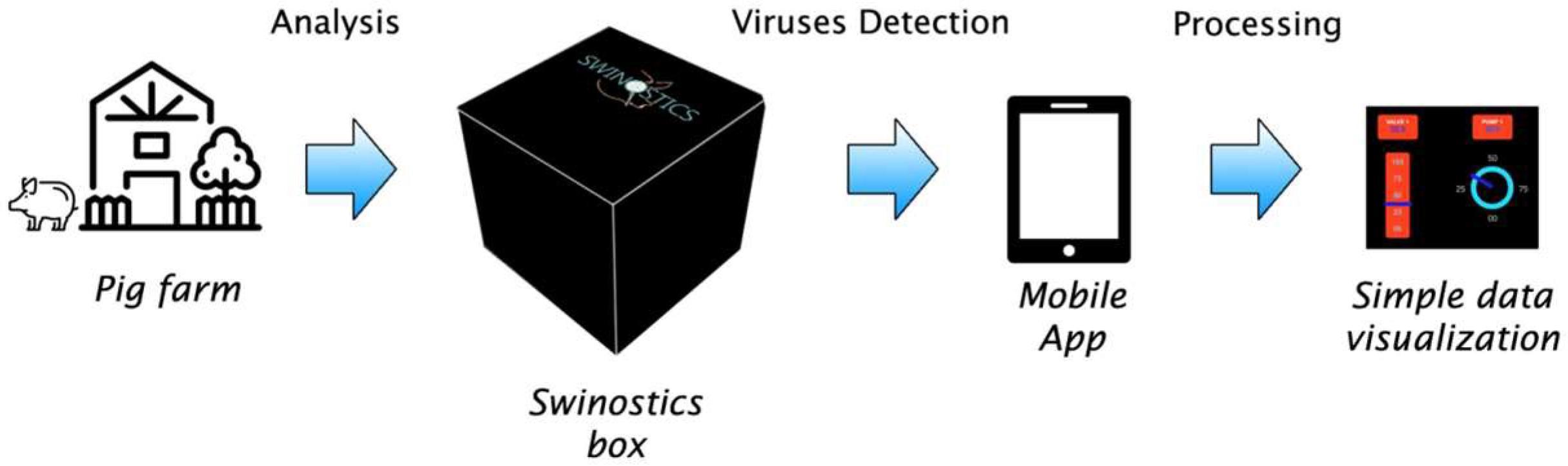 Вирусные инфекции свиней стало проще обнаружить