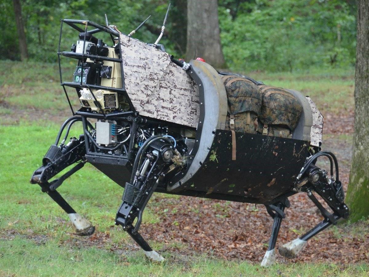 Электронное будущее: роботизированные животные, созданные в разных странах